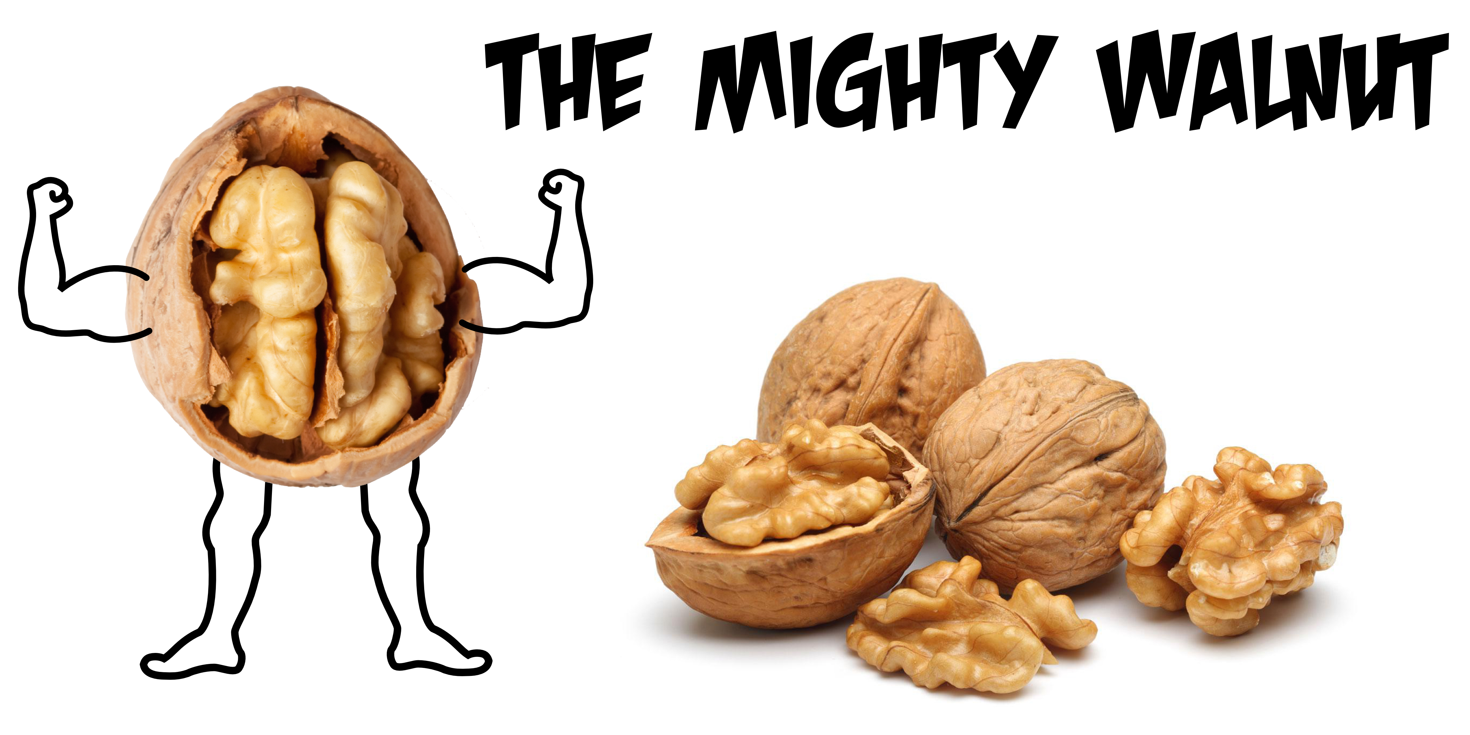 walnuts-brain
